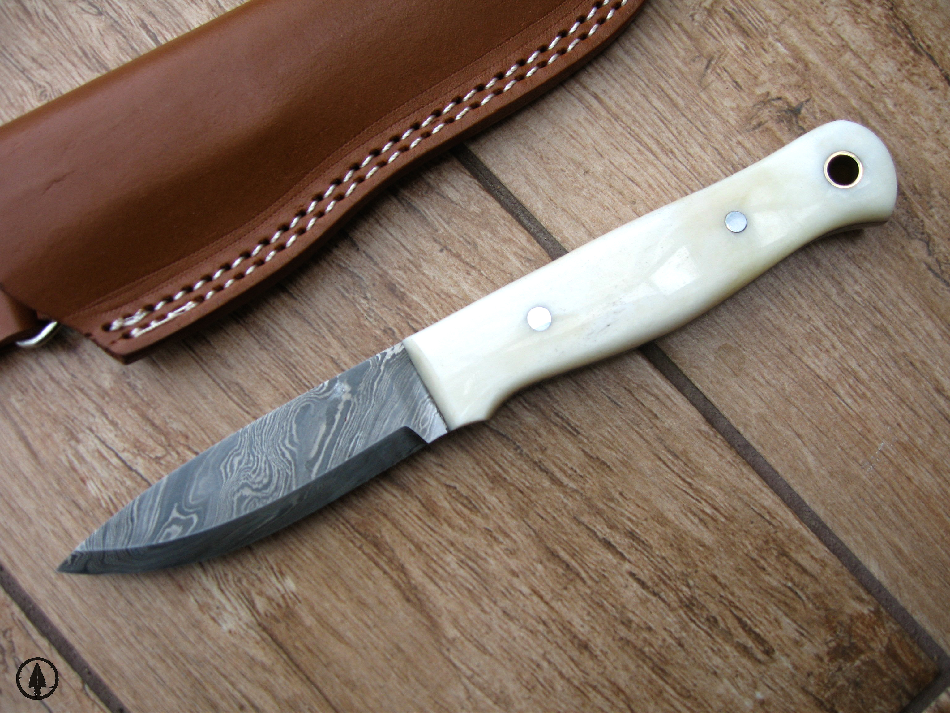 Hunting Knives Types, Uses and Brand Reviews cover