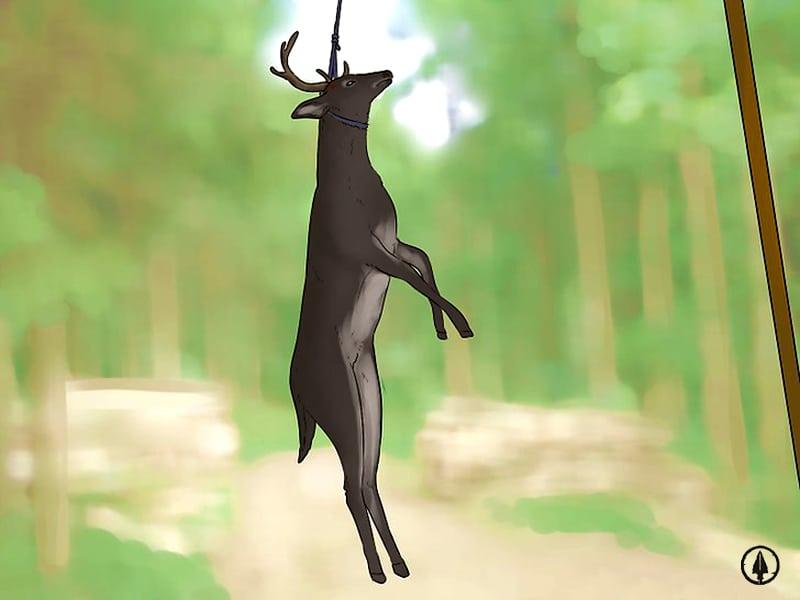 Hanging the Deer