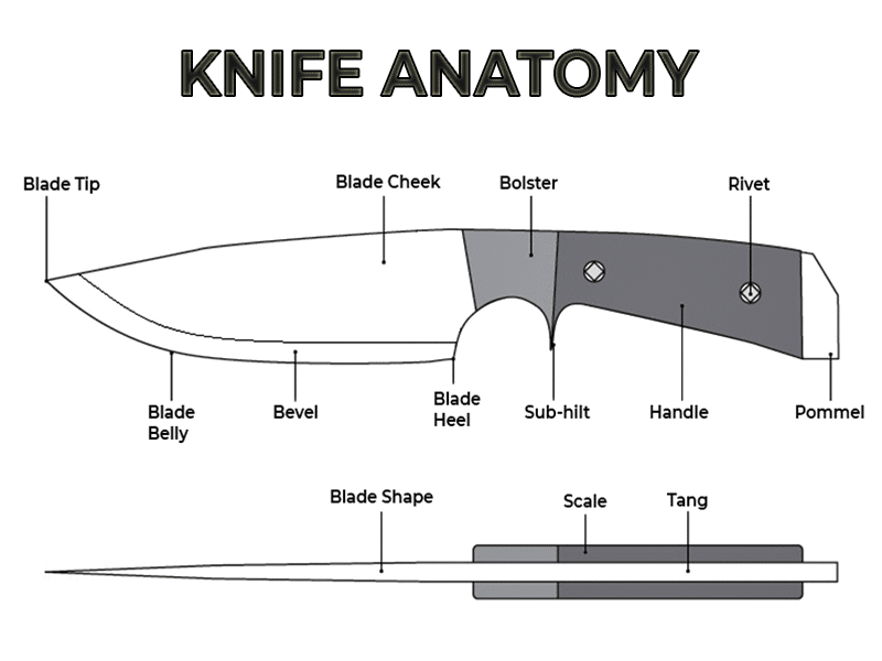 Full Knife Anatomy: What is Knife Tang?