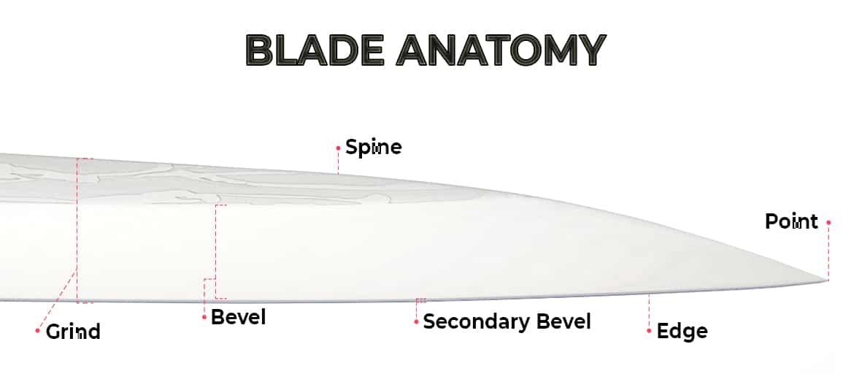 Knife blade anatomy